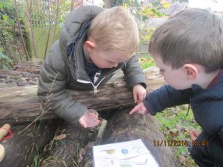 Forest School at Dorking Nursery School and Children's Centre